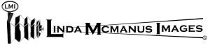 new logo LMI black